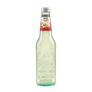 Galvanina Century Ginger Beer ITA 355 ml